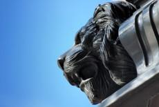 Zaragoza y sus leones 5